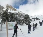 Raquetes de neu a la  Cerdanya,  13 i 14 de Gener