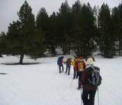 Raquetes de neu, 20 i 21 de Març.