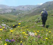 Vall d'Eina, la Vall de les Flors, 4 i 5  de Juliol