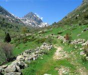 Sant Joan, Vall de Cerdanya, Vall d'Eina i Parc Natural del Cadí , del 24 al 27 de Juny.